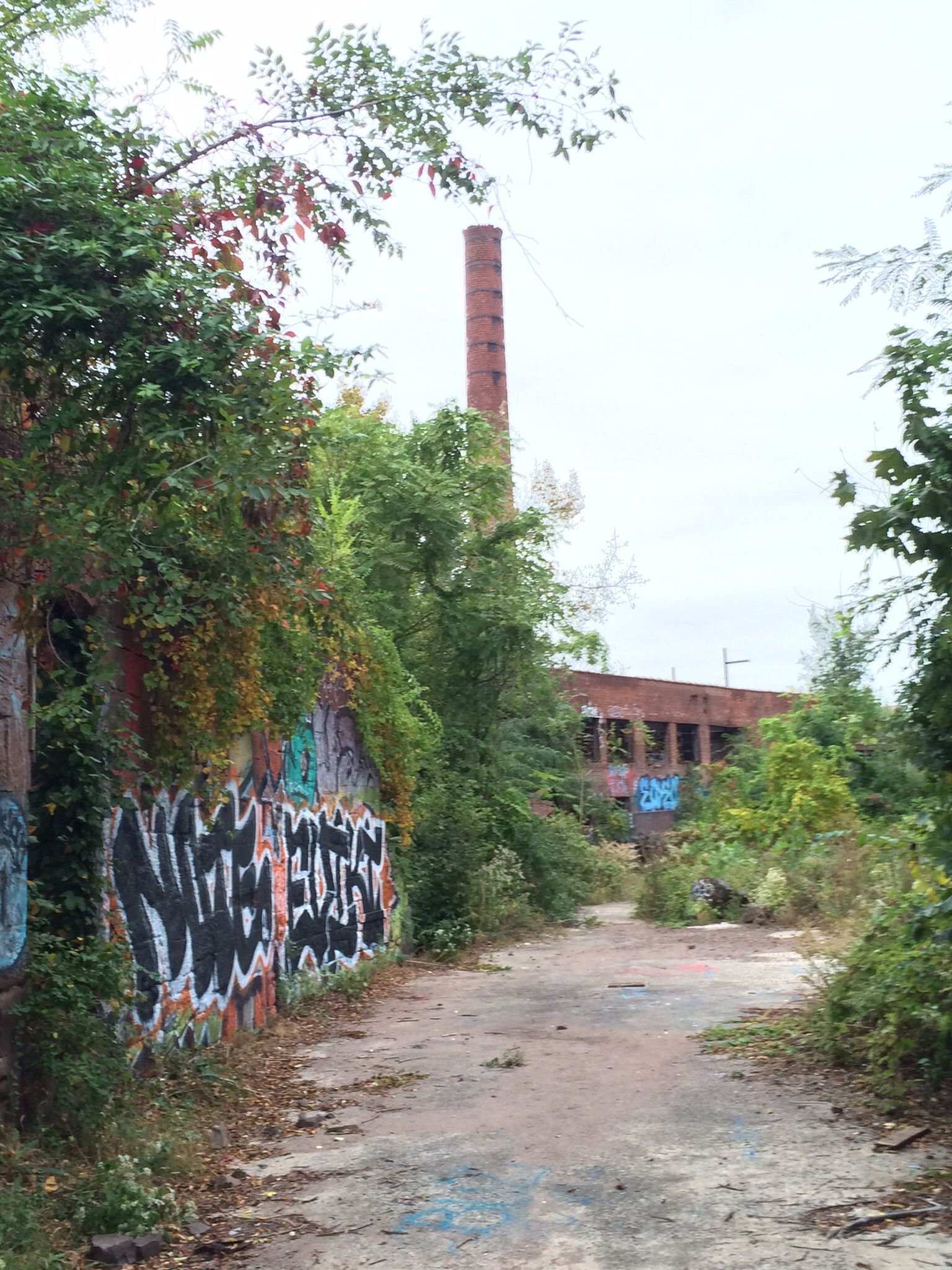 Abandoned Paterson Nj Paterson New Jersey Jersey Girl