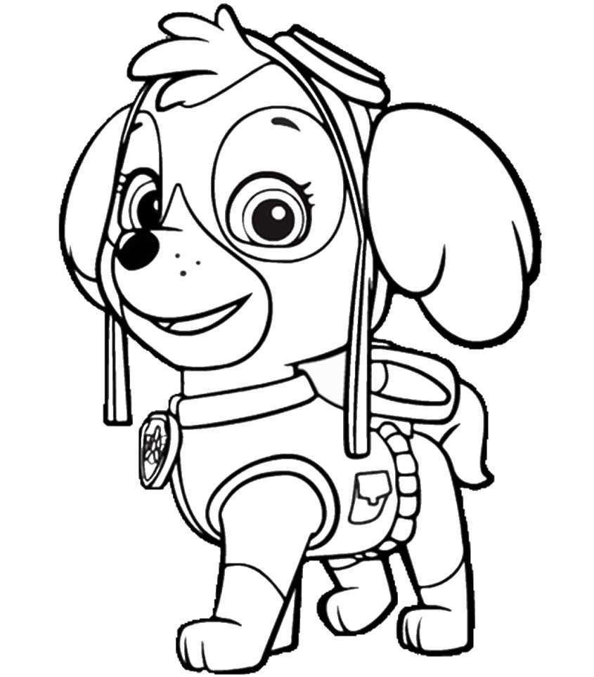 Dibujos Patrulla Canina Para Colorear Fotos Dibujos Dibujos