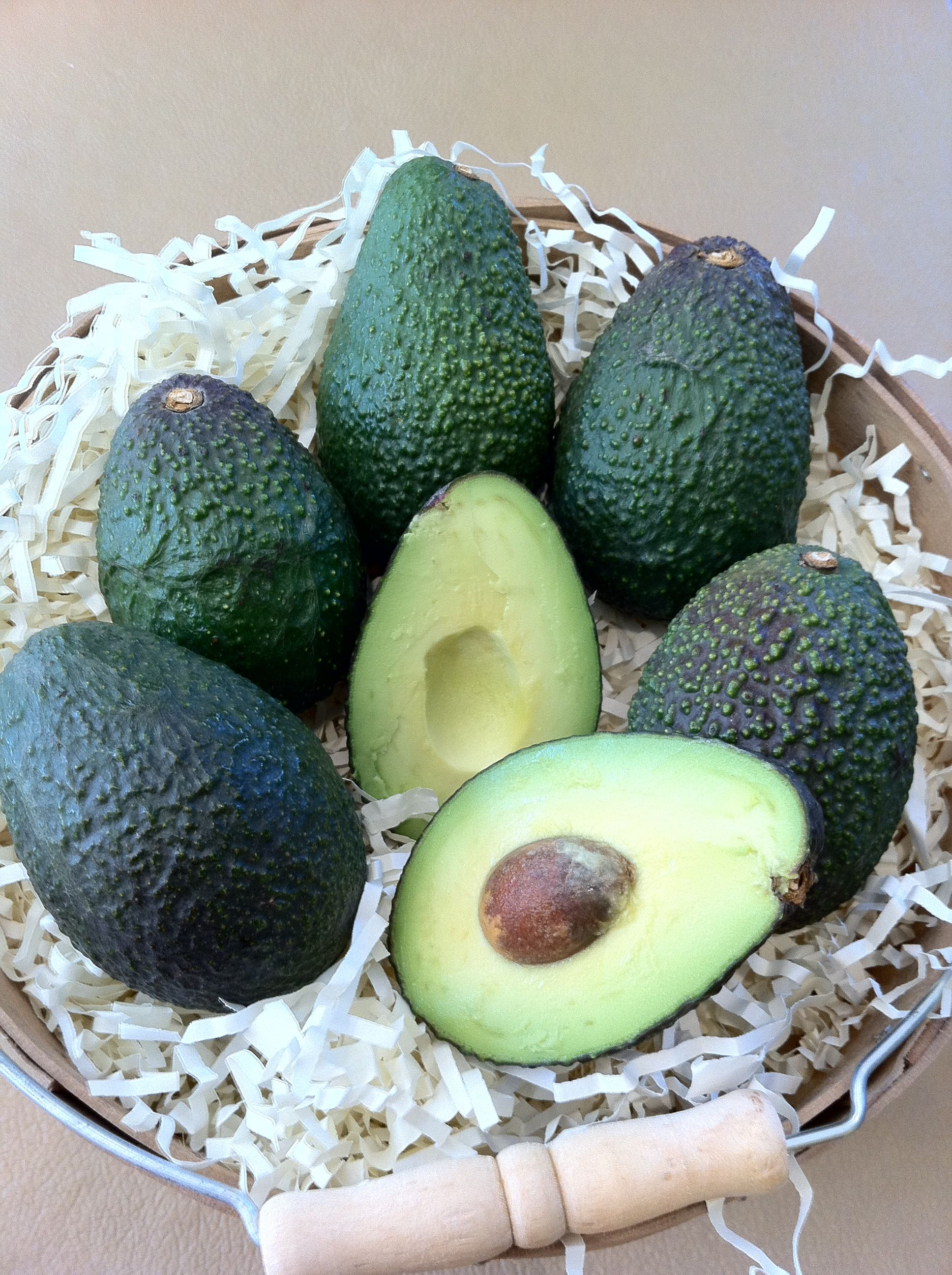 Who wants ONE when you can have a BUSHEL FULL from the Avocado Diva?!