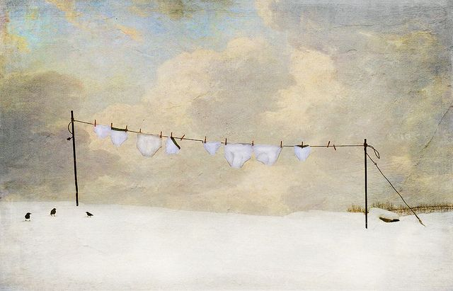 Winter whities are TIDY whities!  LOL!     ...   ... winter whities ... by Jamie Heiden| Flickr - Photo Sharing!