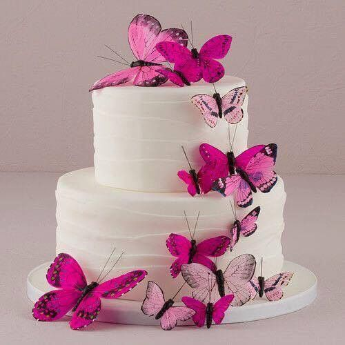 Hot Pink Butterfly Cake Butterfly Cake Decorations Butterfly Cakes Cake
