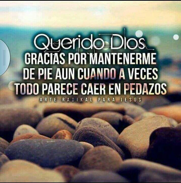 Querido Dios Gracias Por Mantenerme De Pie Frases God Dear