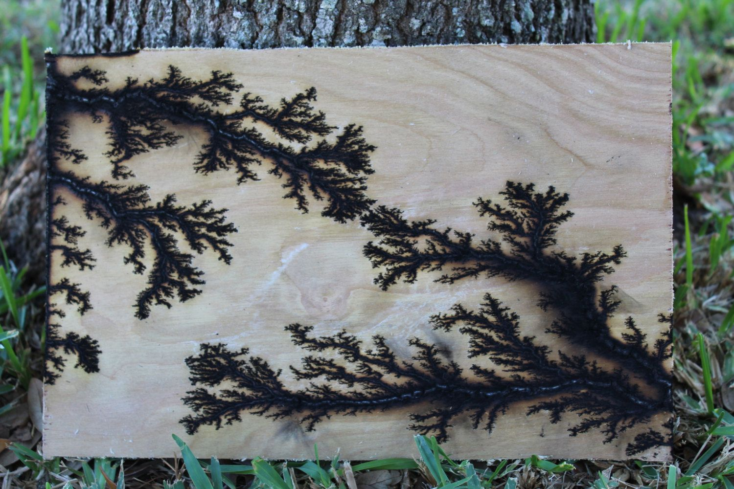 woodburn fractals with electricity woodworking woodburning and woods. Black Bedroom Furniture Sets. Home Design Ideas
