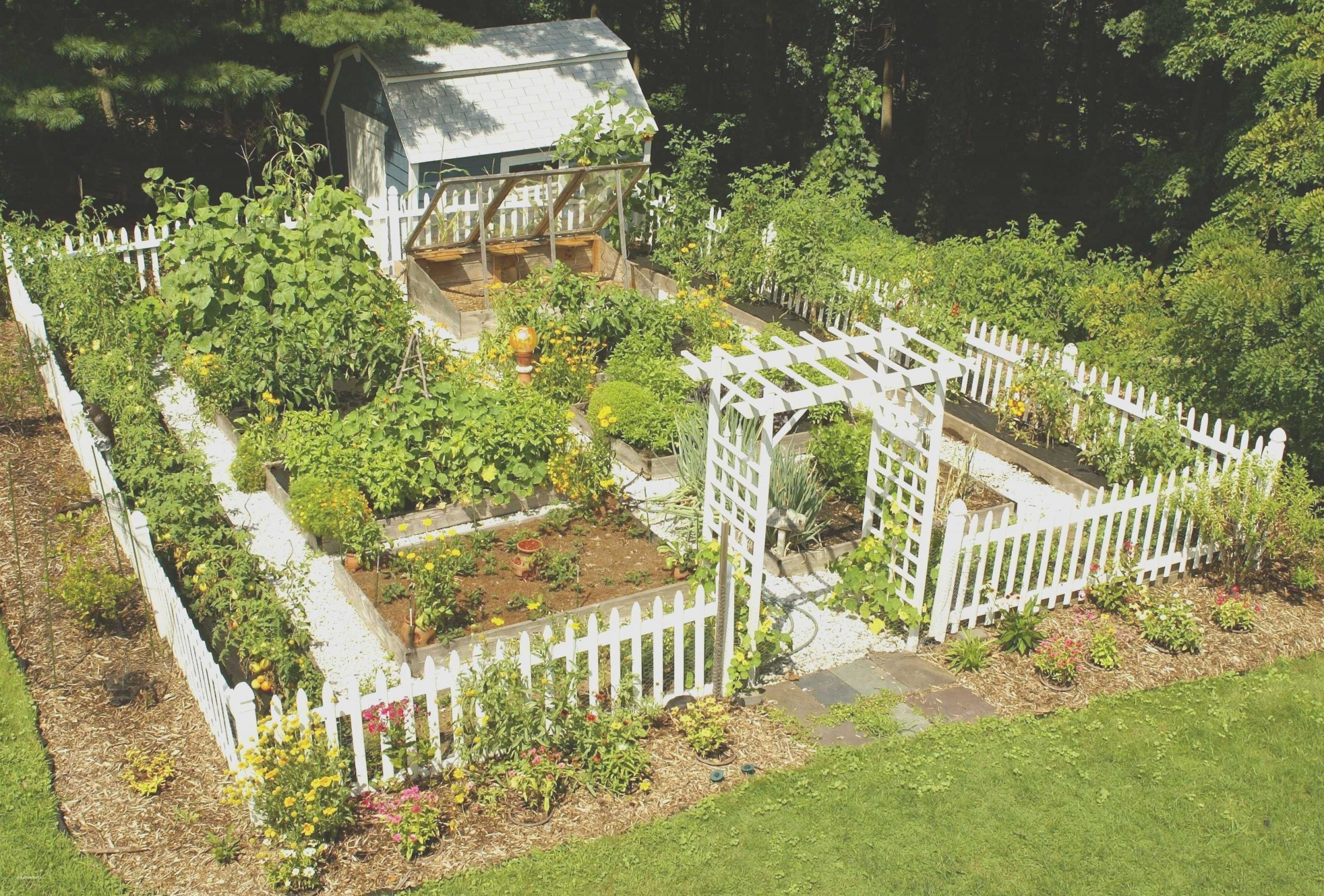 40 Perfect Home Vegetable Garden Design Ideas In 2020 Home