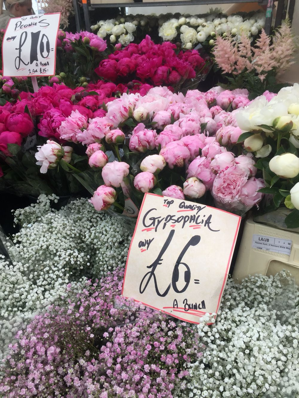Peonies And Baby S Breath In Columbia Road Flower Market Columbia Road Flower Market Flower Market Flowers
