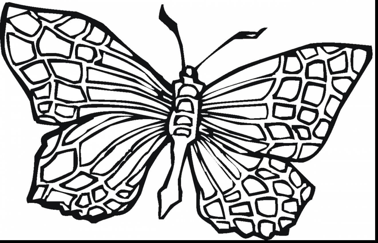 Cool Butterfly Coloring Pages Ideas For Girls And Boys Geometric
