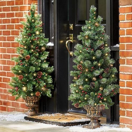 Set of 2 48 Pre Lit Battery Operated Porch Tree Outdoor Christmas Topiary  Yard Decor ** You can find out more details at the link of the image. - Set Of 2 48 Pre Lit Battery Operated Porch Tree Outdoor Christmas
