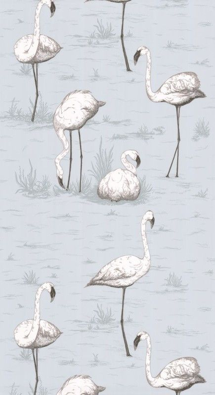Cole & Son Contemporary Restyled Flamingos 95/8047