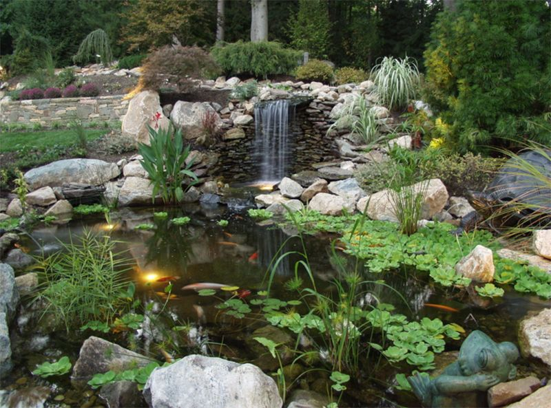 Koi Pool Are Man Made Ponds That Are Used For Holding Koi Fishes Diy Mini Garden Diy Mini Garden Japanese Water Gardens Water Gardens Pond Pond Landscaping