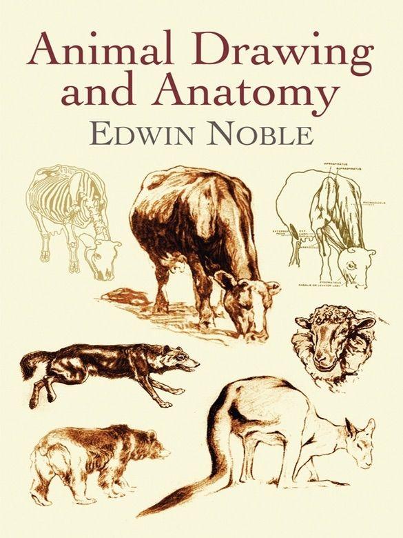 ?Animal Drawing and Anatomy #, #AFF, #Anatomy, #books, # ...