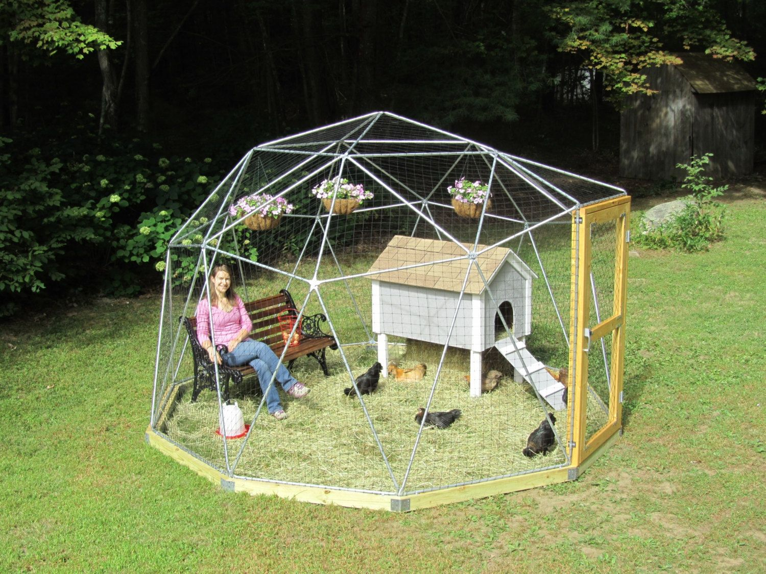 12 ft Geodesic Dome Outdoor Aviary, Chicken Enclosure, Animal Pen ...