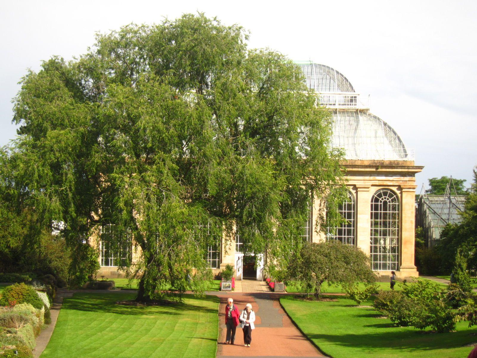 Royal Botanic Garden Edinburgh   Botanic gardens edinburgh ...