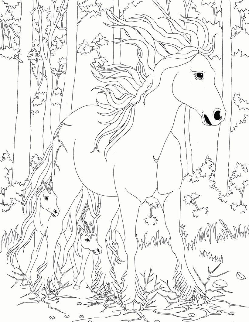 Coloriage Bella Sara Jument Et Son Poulain Horse Coloring Pages
