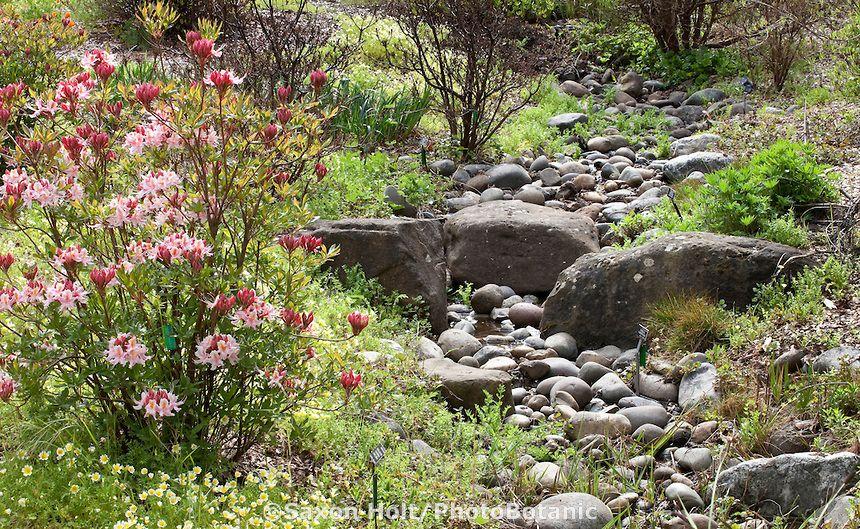 Rock Lined Drainage Swale Seasonal Stream In Menzies California