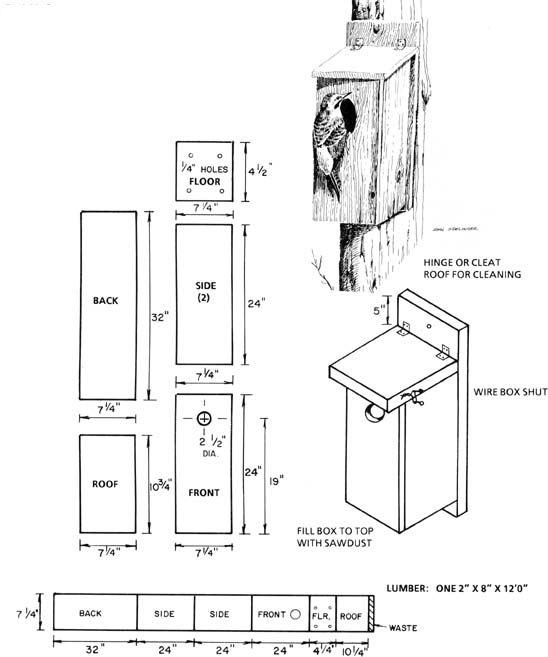 northern flicker nest box | bird houses | pinterest | nest box, bird