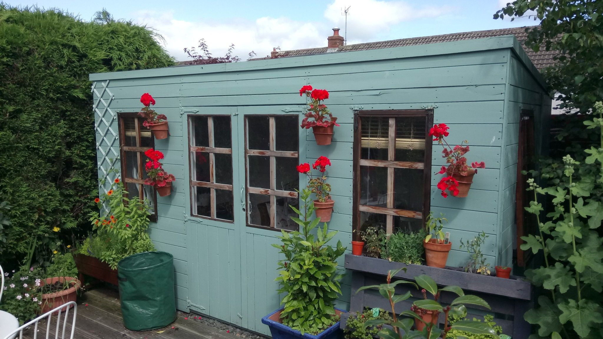 Every year I hang potted geraniums onto the front of the Summerhouse ...