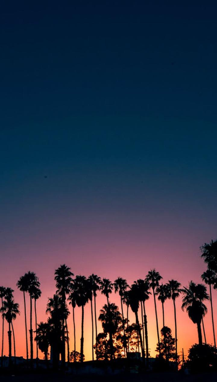 40 Beautiful Wallpapers For Iphone X Sunset Iphone Wallpaper Wallpaper Iphone Summer Preppy Wallpaper