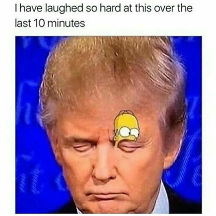 Finally A Good Use For Trump Really Funny Memes Crazy Funny Memes Funny Relatable Memes