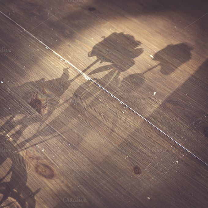 Check out Shadow of Flowers by Wim's images! on Creative Market