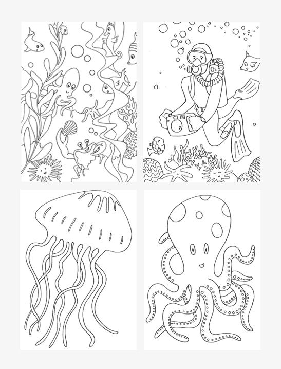 Under The Sea Coloring Pages Mr Printables Bird Coloring Pages Coloring Pages Coloring Pages Inspirational
