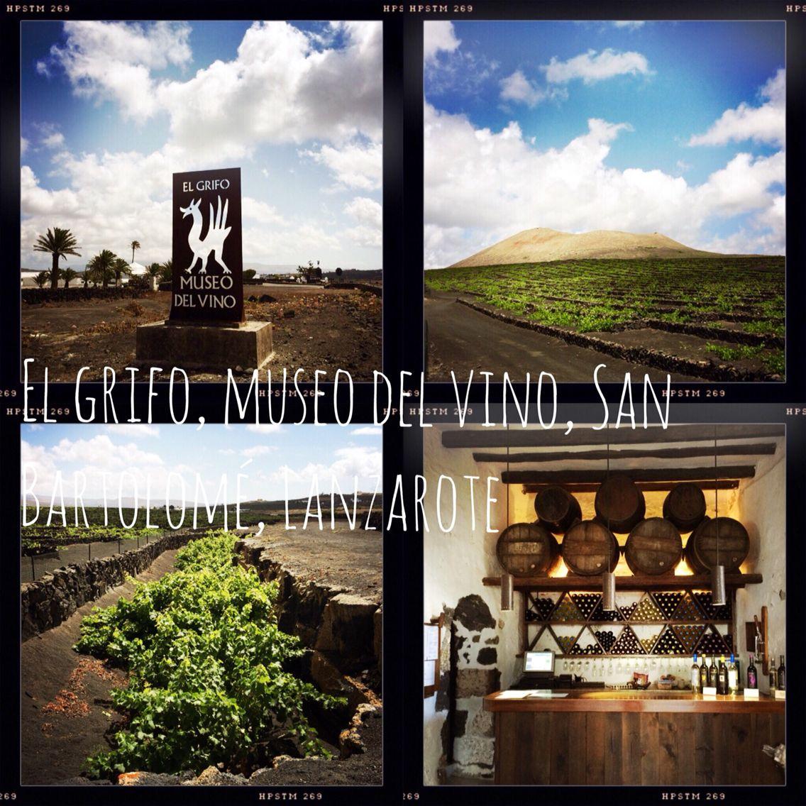 Museo Del Vino.Taste The Lanzarote Malvasia Grape El Grifo Museo Del Vino San