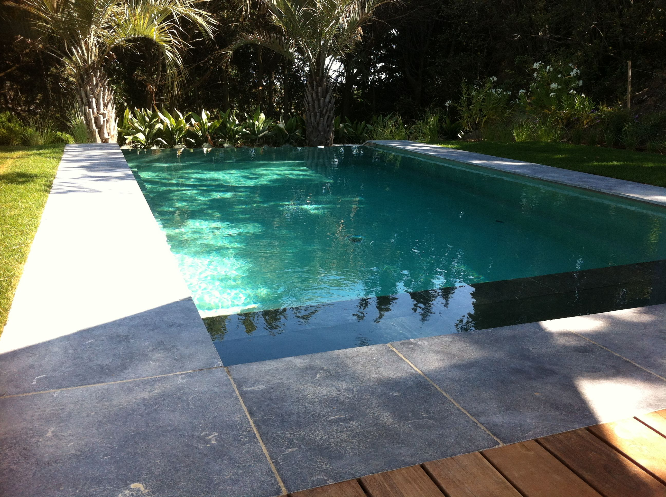 Les bassins du sud piscine contemporaine pools decks for Piscine researcher
