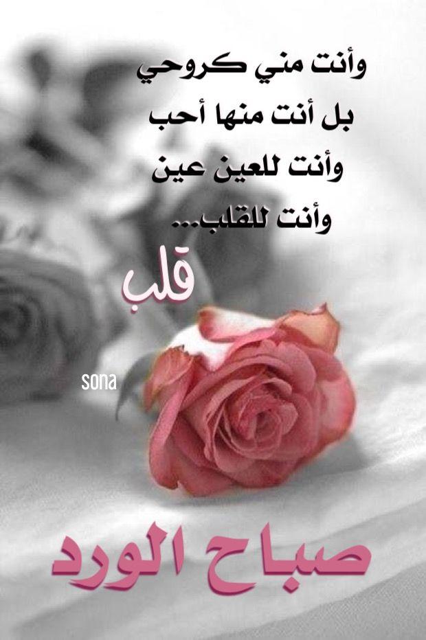 صباح الورد Morning Love Quotes Good Morning Arabic Good Morning My Love
