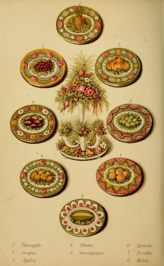 Colour Plate from Warne's Model Housekeeper (London, 1882)