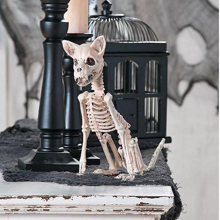 Best Scary Indoor Halloween Decorations Halloween