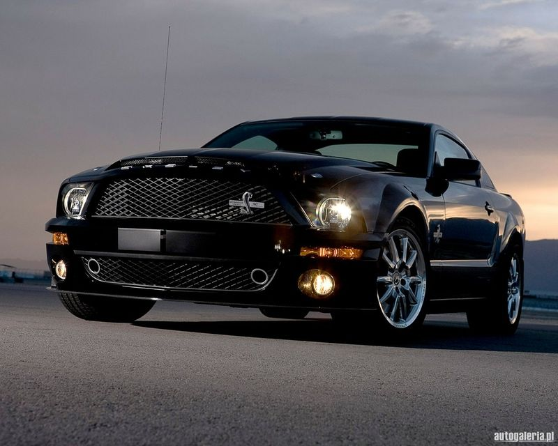 Cars 2008 Ford Shelby Shelby Gt500 Wallpaper Mustang Shelby Ford Mustang Cobra Ford Mustang Shelby
