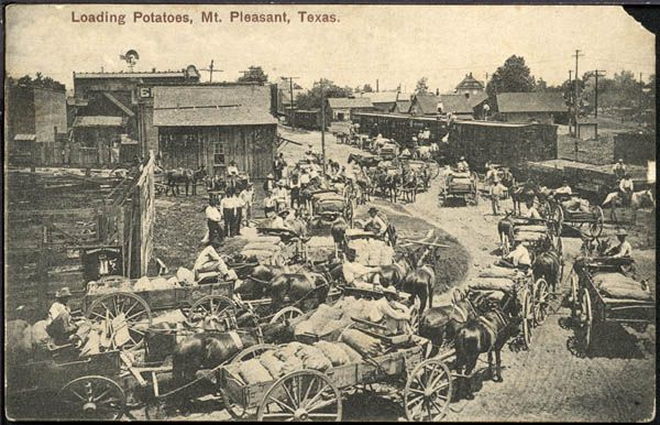 Loading Boxcars With Potatoes On The Paris Mount Pleasant R R Siding At Mount Pleasant Texas Ca 1911 Texas Towns Texas History Historical