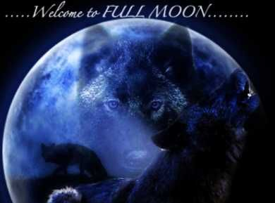 Welcome to Full Moon