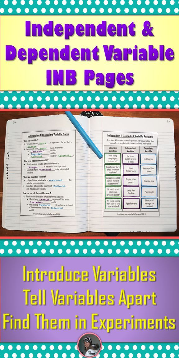 Independent Variable And Dependent Variable Interactive Notebook