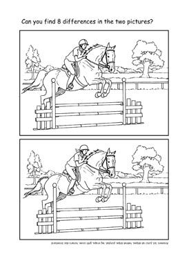 Sport the differences  Horsey Stuff  Pinterest  Horse Horse