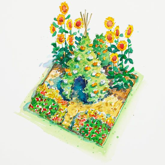 Vegetable Garden Ideas For Kids plans for vegetable gardens | vegetable garden and garden planning