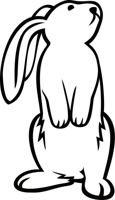 Clipart White Bunny Rabbit Pictures Bunny Drawing Easter Illustration