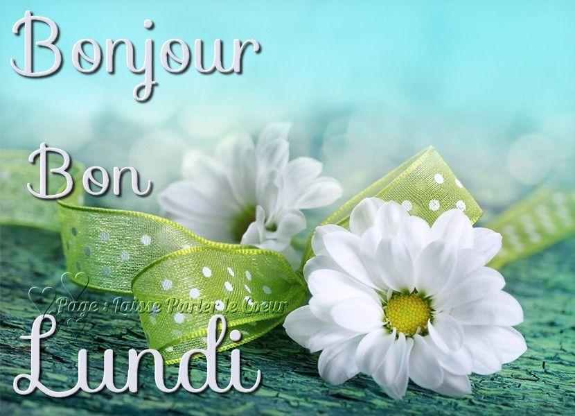 Bonjour, Bon Lundi (avec images)   Bon lundi, Bon weekend, Bon ...