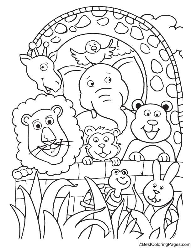 Group Of Animals Coloring Page Zoo Animal Coloring Pages Animal Coloring Pages Zoo Coloring Pages
