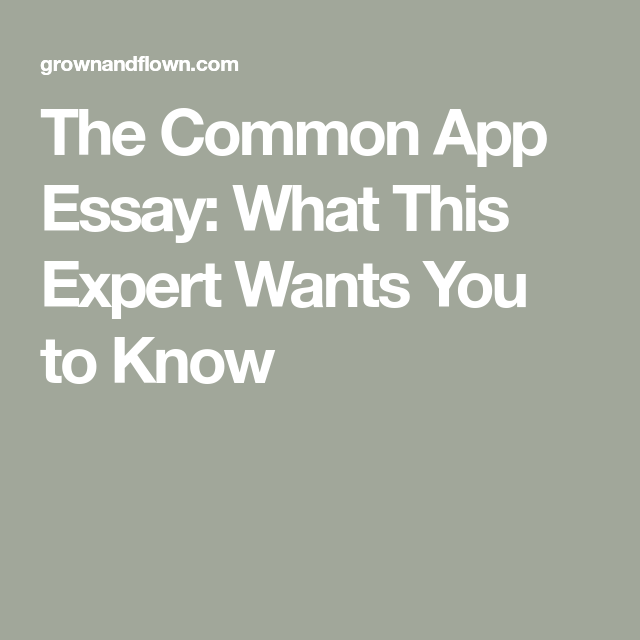 The Common App Essay What This Expert Wants You to Know