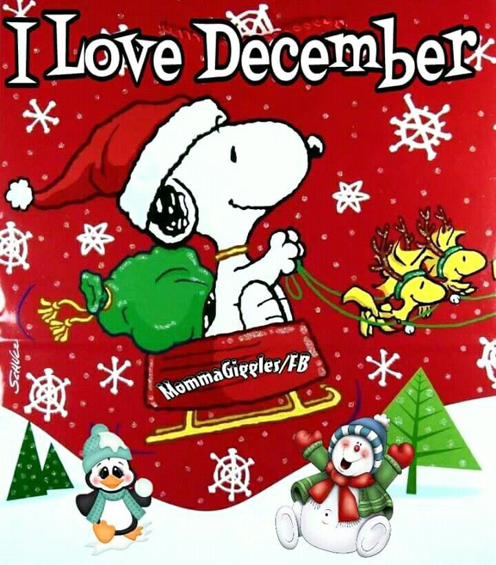 snoopy christmas christmas holidays xmas christmas ideas snoopy images peanuts gang christmas pictures comic book winter - Snoopy Christmas Gifts