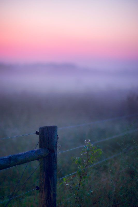 Early morning haze in pink and lavender.