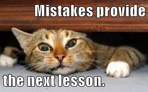 Funny Memes For Stress : Growth mindset memes english mistakes provide the next lesson