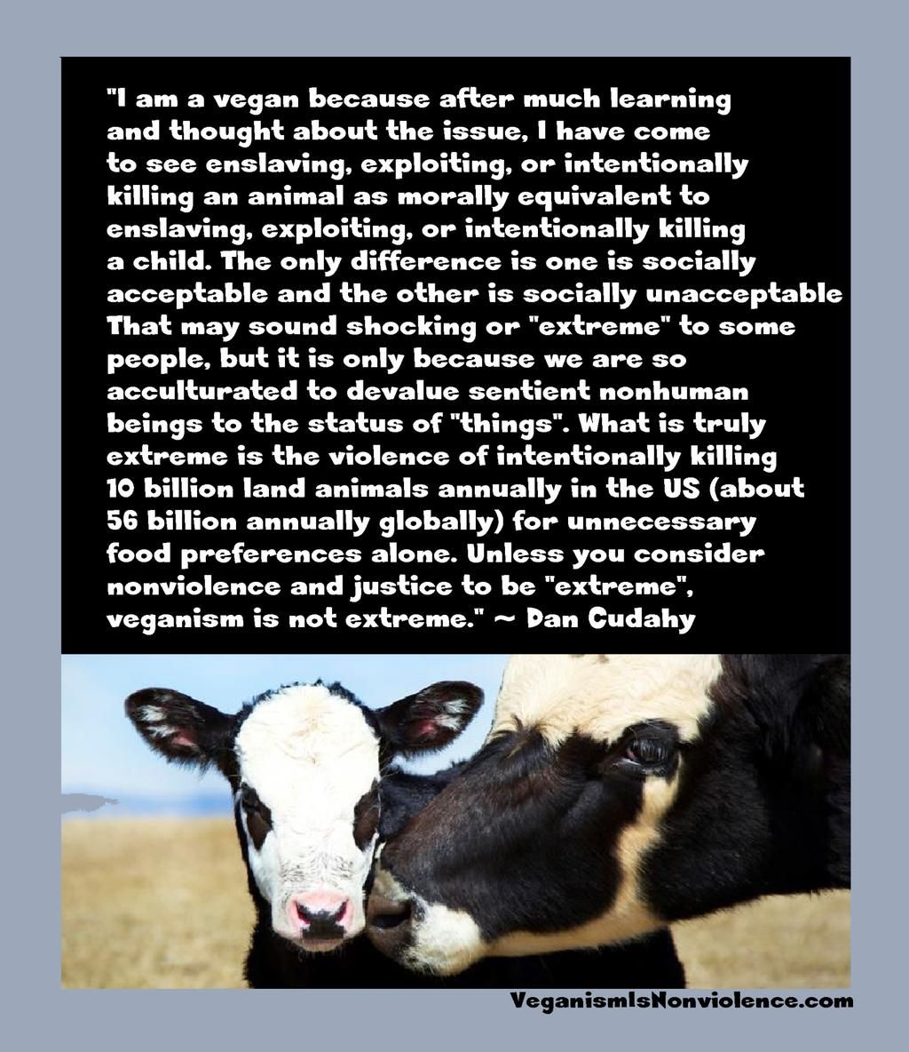 Animal Cruelty Quotes Farm365 Ⓥ On  Vegans Animal And Animal Cruelty