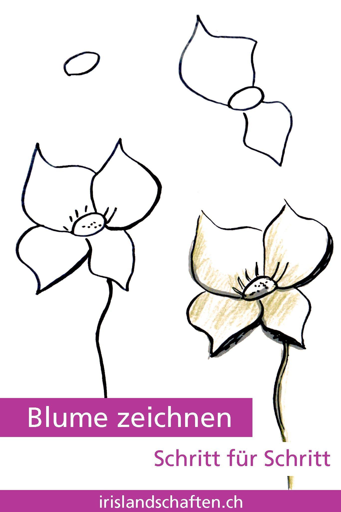 Pflanzen Zeichnen Schritt Fur Schritt Blumen Zeichnen Schritt Fur