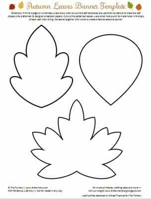 Foglie autunno Pinterest Template, Leaves and Stenciling - leave templates