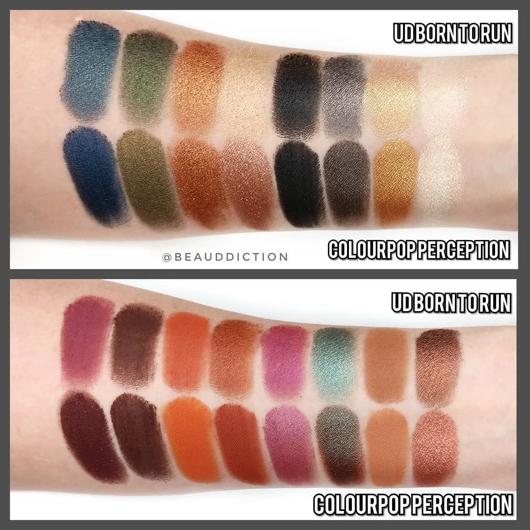 5584112c378 UD Born To Run vs Colourpop Perception palette | Beauty | Makeup ...