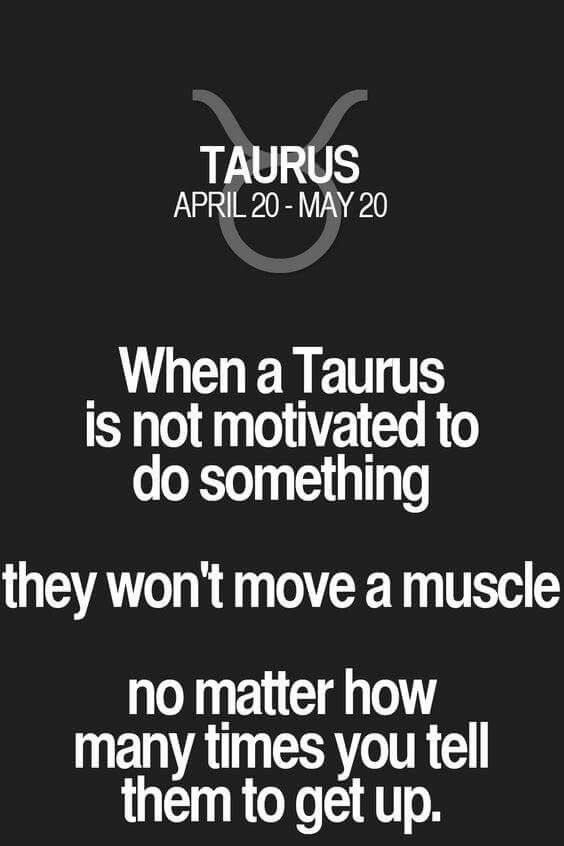 Taurus Quotes Amazing Pinvinny Taurisia On Zodiak  Pinterest  Taurus Zodiac And .