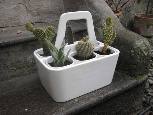 Mini ceramic garden by Bosa. Individual ceramic planters within a larger ceramic carrier.