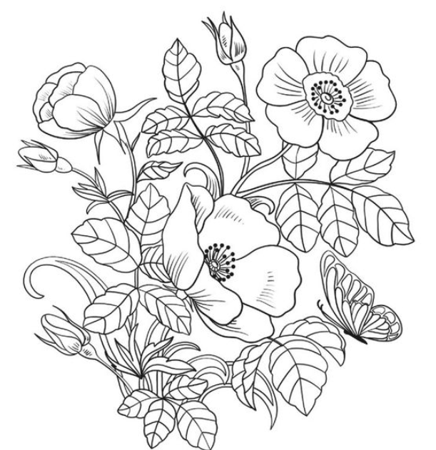 Coloring Flowers In 2020 Printable Flower Coloring Pages Spring Coloring Sheets Flower Coloring Sheets