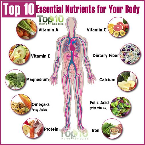 Top 10 Essential Nutrients for Your Body   Different types of ...